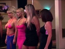 Cathouse The Series S1 Episode 5